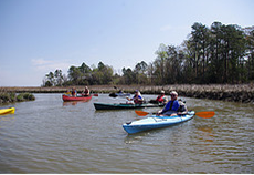 York River State Park will host the annual Estuaries Day Saturday, Aug. 23, from 9 a.m. to 3 p.m.